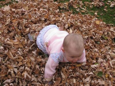 Crawling Around