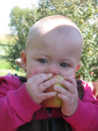 Lily Eating An Apple