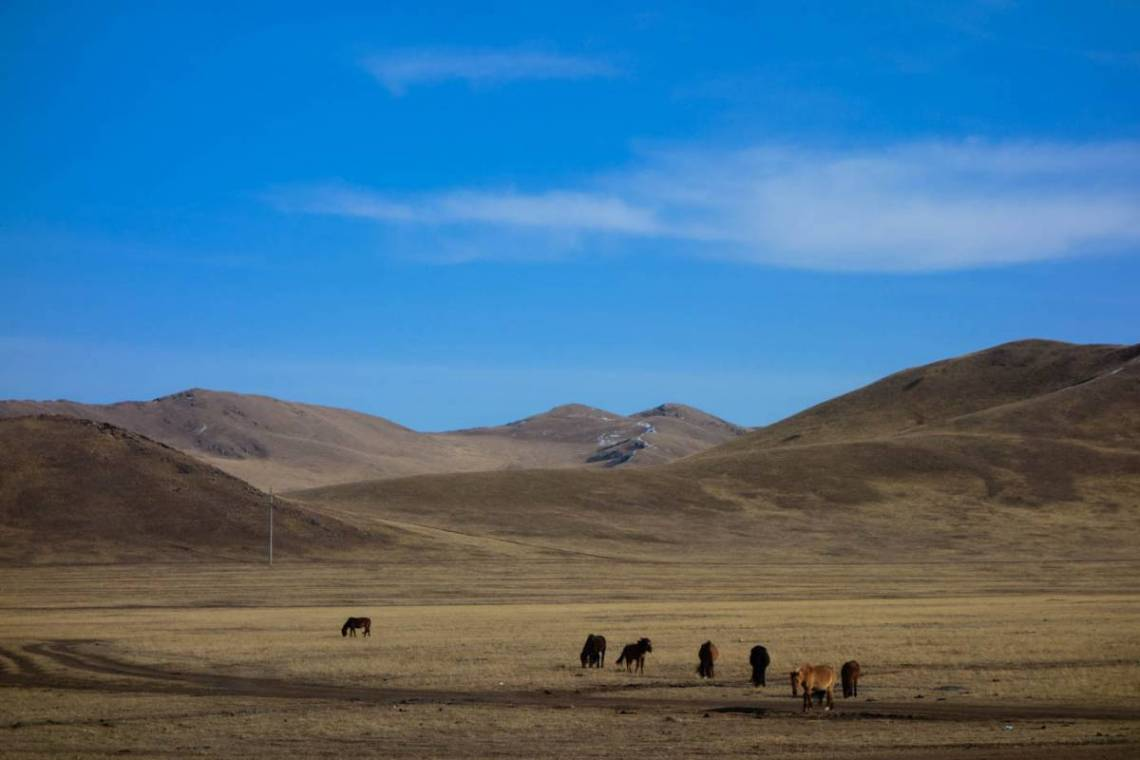 Cycling the Gobi, a desert with surprises