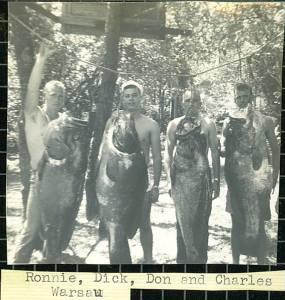 Giant Fish Caught off Cape San Blas-Circa 1960's