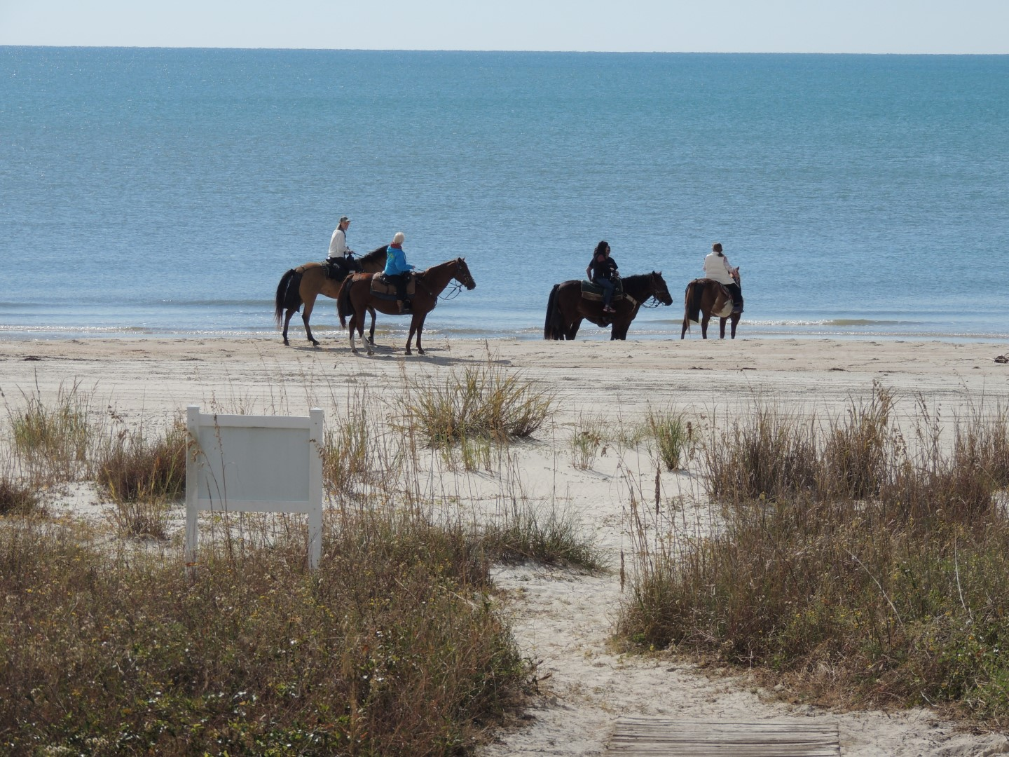 Horse Back Riding on Beach