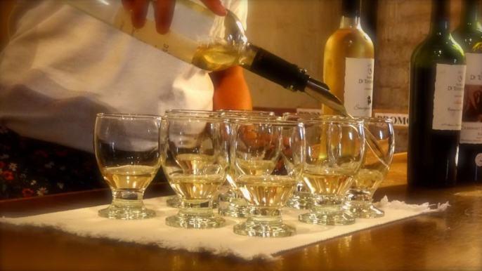 First wine tasting in Maipu