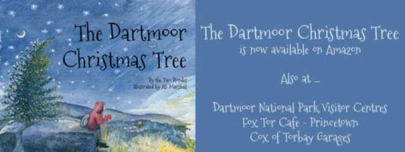 Buy the Dartmoor Christmas Tree now on Amazon.