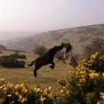 Ponies Eclipse 2