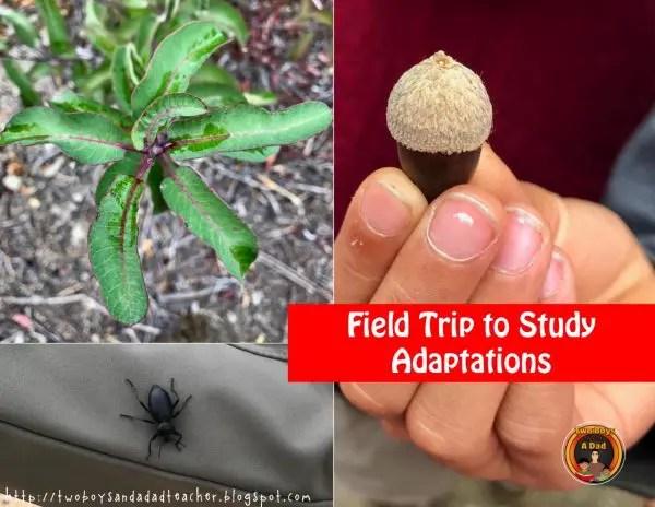 adaptations field trip