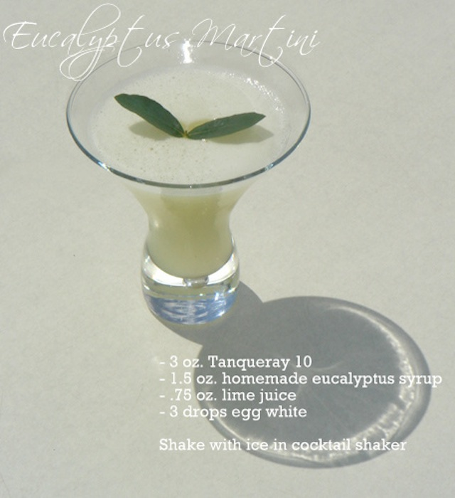 Eucalyptus cocktail