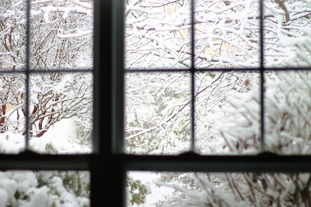 happenings 223 snow globe | Two Delighted