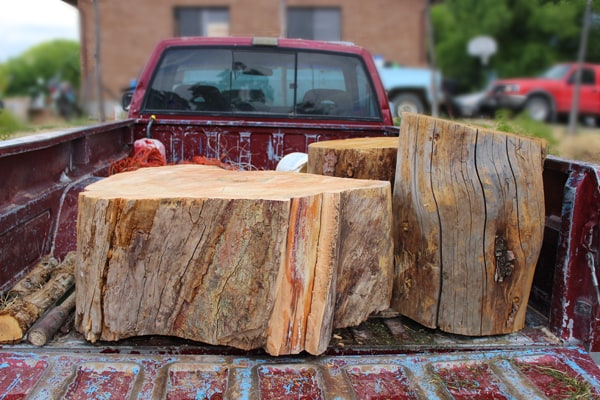 DIY Tree Stump Table - Tree trunk console table