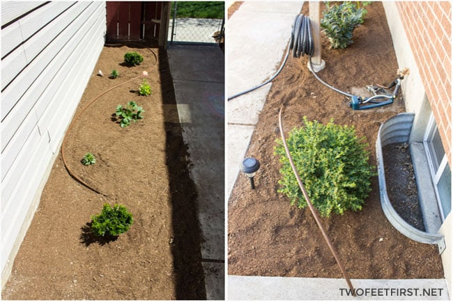 Make watering plants easier, how to install a drip system. Or extend your current system.