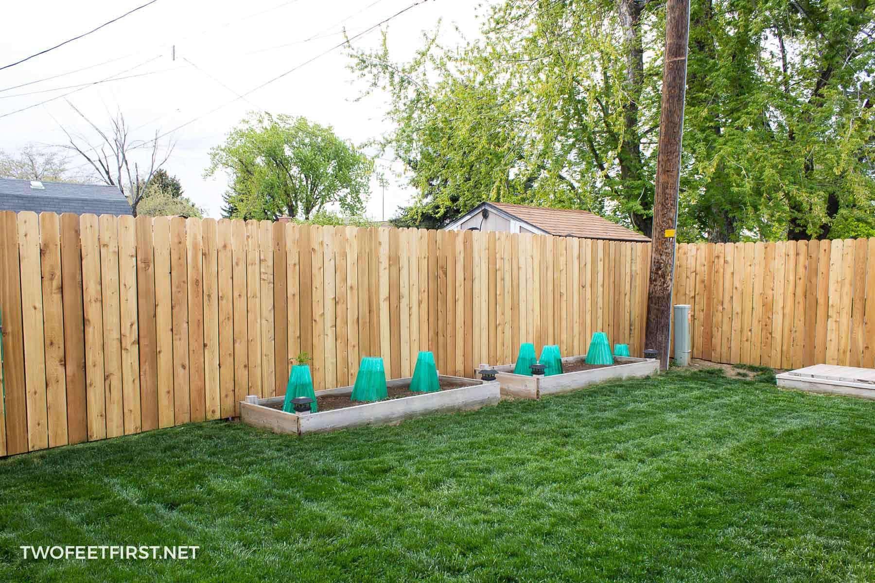 updated cedar fence