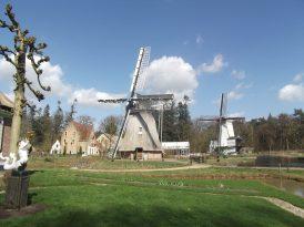 Traditional windmills