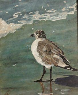 Bird at sea
