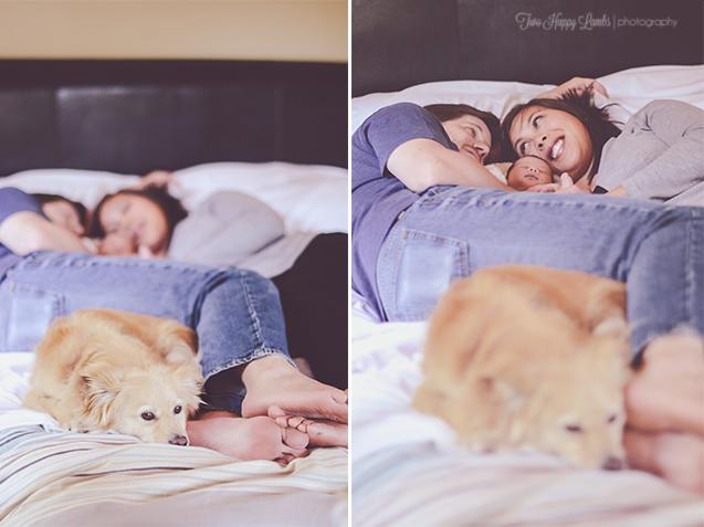 furbaby-newborn-photography-lifestyle-dog-pet-baby-photos