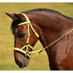 Shop Sidepull Bitless Bridles At Reasonable Prices Two Horse Tack
