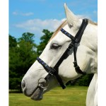 Top Quality English A Convert Bridle Made From Beta Biothane For Horses At Two Horse Tack