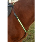 Shop English Horse Breast Collars From Two Horse Tack