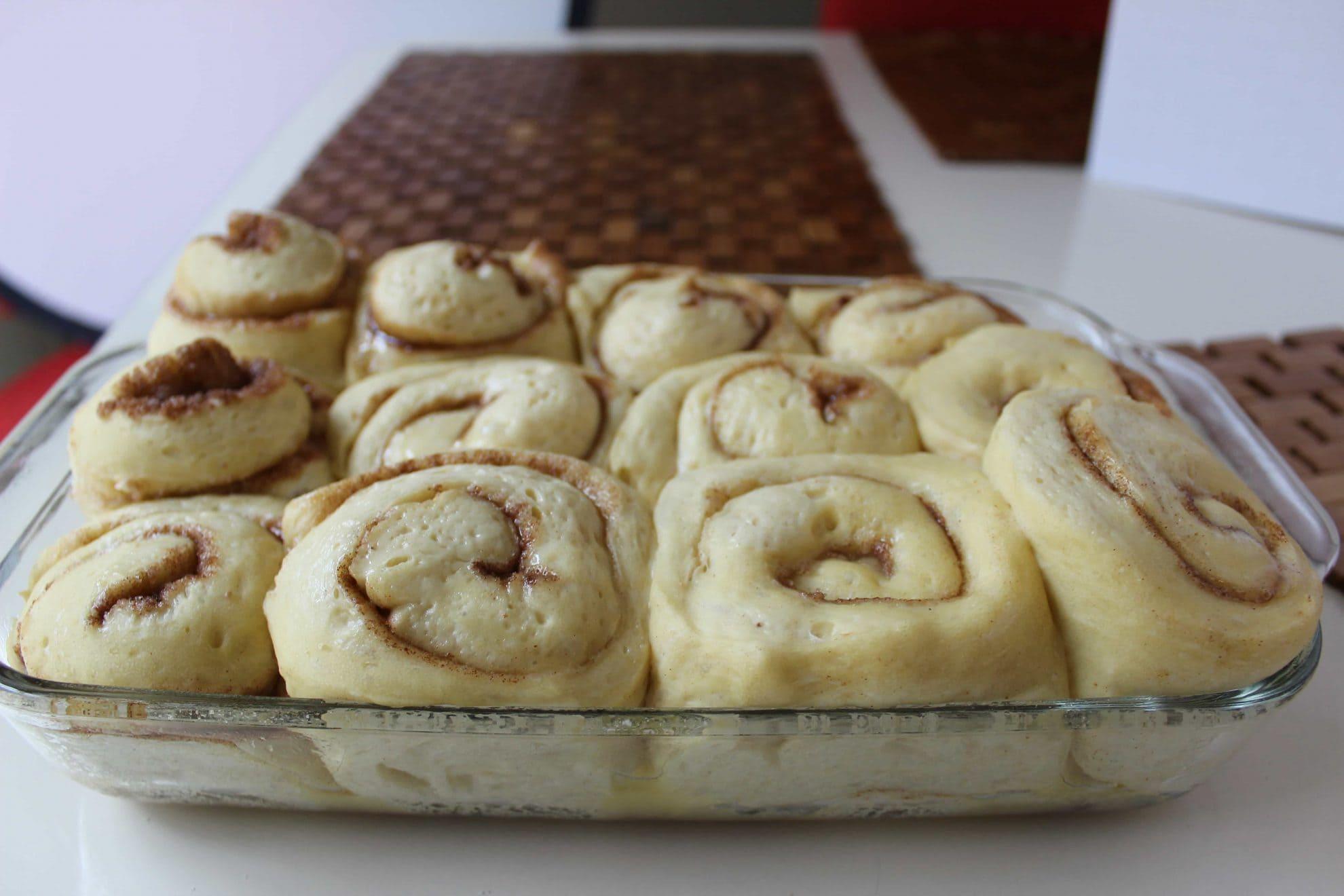 cinnamon buns rising before baking