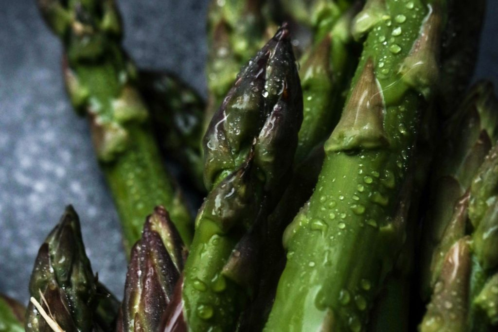 green asparagus with water drops on a dark background