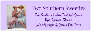 Two Southern Sweeties Banner