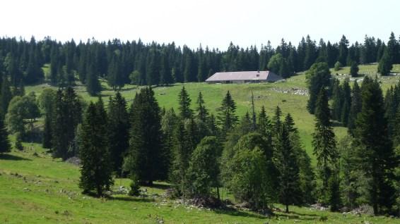 Le Mazel - Vaud - Suisse