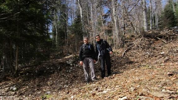 Aux environs de la Route des Bois - Vaud - Suisse