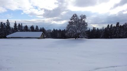 La Grillette – Vaud – Suisse