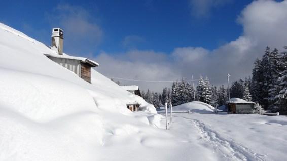 Chalet d'alpage de la Sèche de Gimel - Le Chenit - Vaud - Suisse