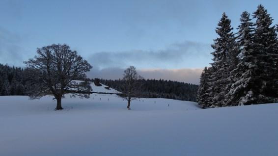 Pré de Rolle - Vaud - Suisse