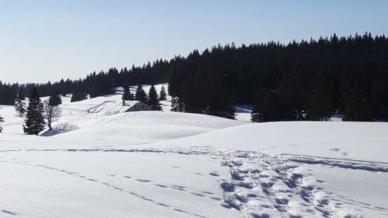 Haut-Mont - Vaud - Suisse