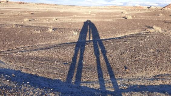 Bisti Wilderness Area - New Mexico