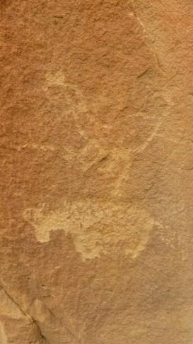 44 Panel - Crow Canyon - Nouveau Mexique