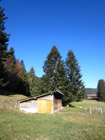 Couvert des Prés d'en Haut - Arzier-Le Muids - Vaud - Suisse