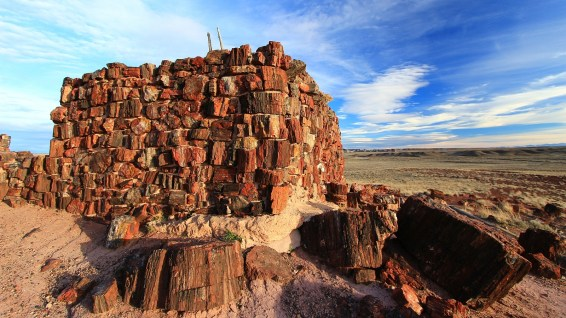 Agate House - Petrified Forest National Park - Arizona