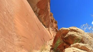 Lower Butler Wash - Cedar Mesa - Utah