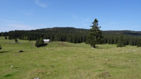 Haut Mont - Vaud - Suisse