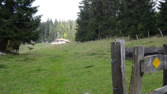 Perroude de Marchissy - Vaud - Suisse
