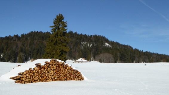 Le Crot - Vaud - Bassins - Suisse