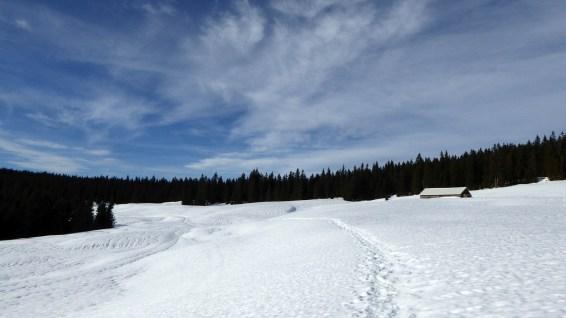 Couvert de la Sèche de Gimel - Vaud - Suisse