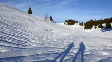 Non loin de la Combe des Amburnex - Vaud - Suisse