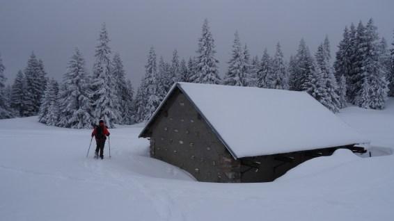 Couvert à proximité du Grand Cunay – Vaud – Suisse