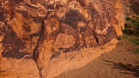 Big Buffalo - Nine Mile Canyon - Utah