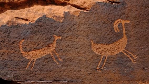 Captive Goat Panel - Amasa Back Trail - Moab - Utah