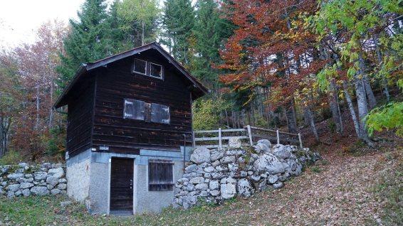 Baraque à Kuffer - Gingins - Vaud - Suisse