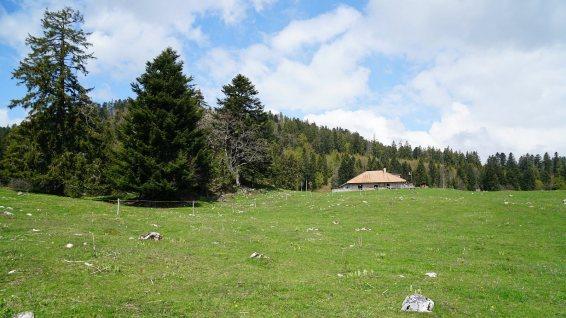 Pré Nouveau - Arzier-Le Muids - Vaud - Suisse