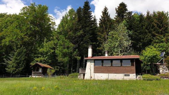 Camizou - Bassins - Vaud - Suisse