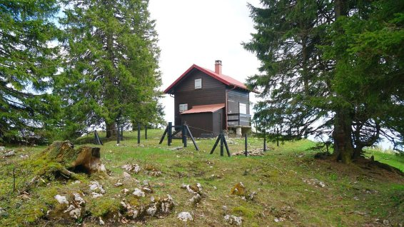 Le Fossile - Arzier-Le Muids - Vaud - Suisse