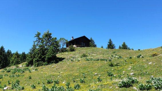 Chalet de M'sieur Claude - Berolle - Vaud - Suisse