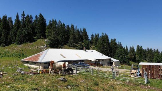 Le Risel - Montricher - Vaud - Suisse