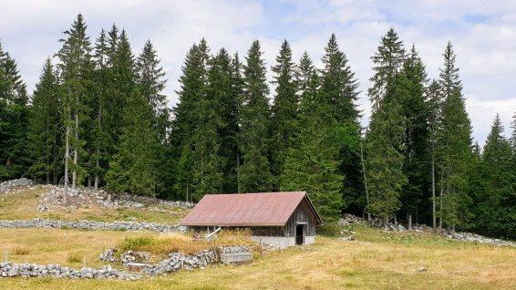 Couvert de la Lande Dessus - Le Chenit - Vaud - Suisse