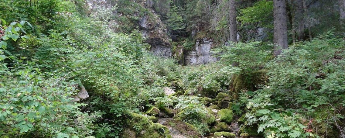 Le Biblanc - Le Chenit - Vaud - Suisse